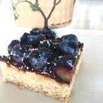 Peanut butter Blueberry Vegan Square $2.50
